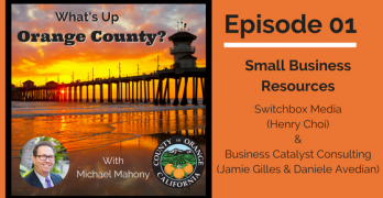 WUOC01 – Small Business Resources – Business Catalyst Consulting and Switchbox Media