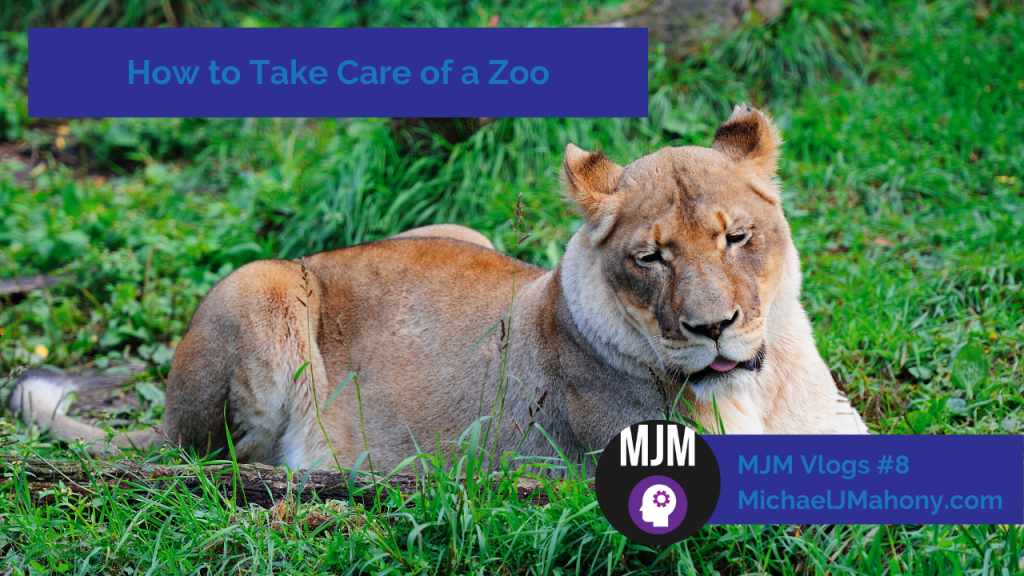 How to take care of a zoo